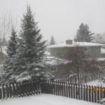 Snow - 06
