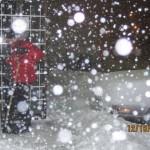 Snow - 31