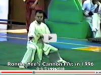 RonnieYeeCannonFist1996