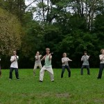 Chen-Taijiquan_Practical_Method_Berlin_WS_30