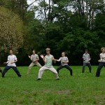 Chen-Taijiquan_Practical_Method_Berlin_WS_31