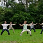 Chen-Taijiquan_Practical_Method_Berlin_WS_34
