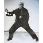 Grandmaster Hong showing stretch