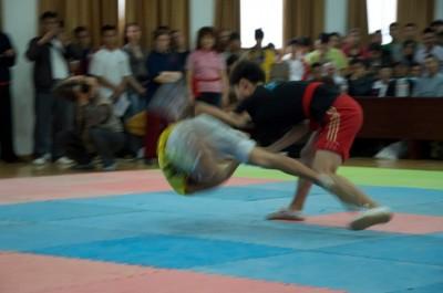 Daqingshan Push Hand Tournament