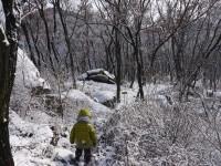 snow on DQS