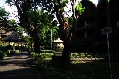 巴厘岛20191120晨- - 8