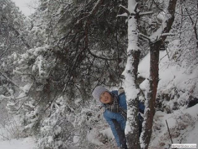12年大青山雪景 - 01