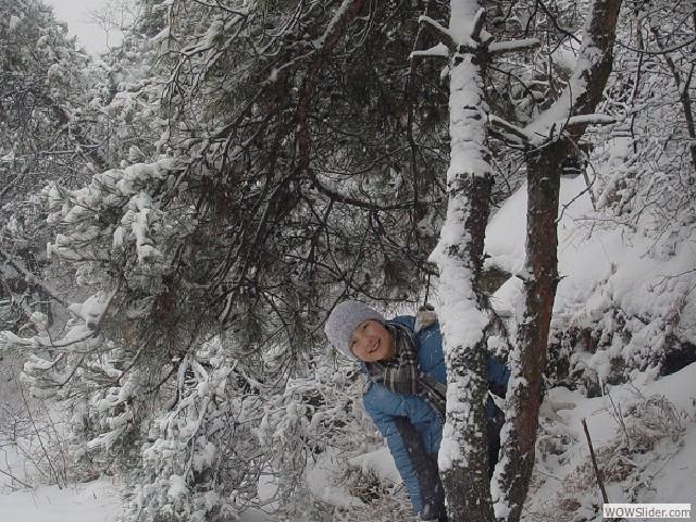 12年大青山雪景 - 05