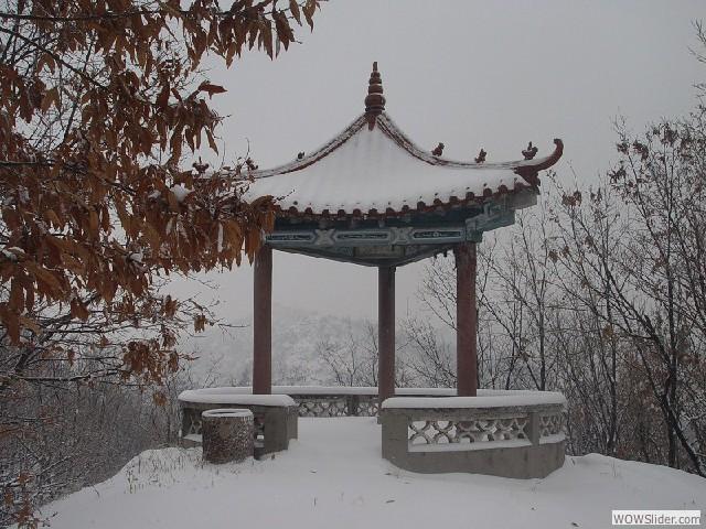 12年大青山雪景 - 10