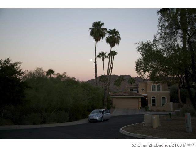 Phoenix - 06